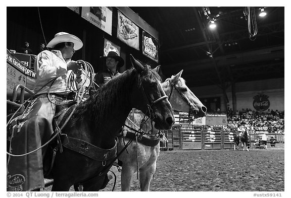 Men riding horses holding lassos. Fort Worth, Texas, USA (black and white)