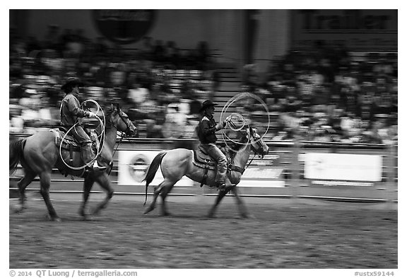 Men on horses preparing lassos. Fort Worth, Texas, USA (black and white)