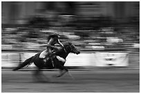 Woman riding horse in speed contest, Stokyards Championship Rodeo. Fort Worth, Texas, USA ( black and white)