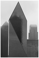 Skyscrapers in rain. Dallas, Texas, USA ( black and white)