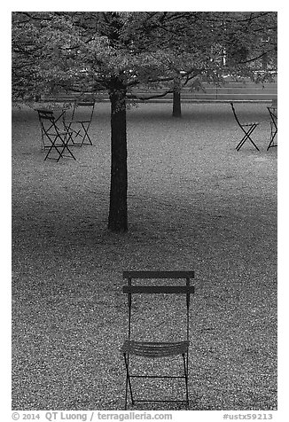 Chairs and trees in courtyard of Dallas Museum of Art. Dallas, Texas, USA (black and white)