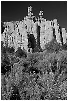 Sagebrush and pink cliffs, Red Canyon. Utah, USA (black and white)