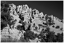 Hoodoos, Red Canyon, Dixie National Forest. Utah, USA ( black and white)