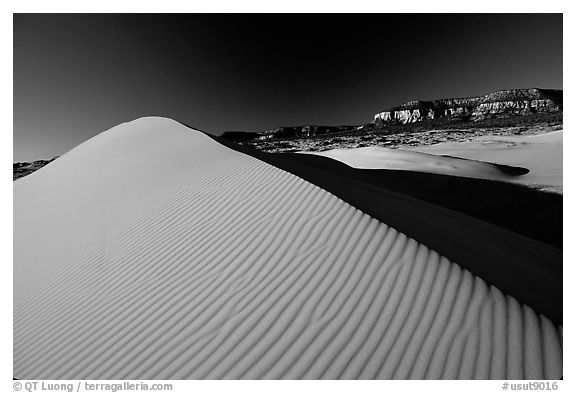 Sand dune at sunset, Coral Pink Sand Dunes State Park. Utah, USA (black and white)