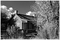 Old house, Grafton. Utah, USA (black and white)