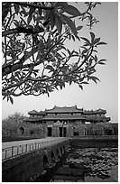 Plumeria trees, Ngo Mon Gate (Moon Gate), Hue citadel. Hue, Vietnam (black and white)