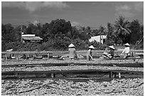Dried fish production. Phu Quoc Island, Vietnam ( black and white)