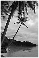 Bai Sau beach and woman. Phu Quoc Island, Vietnam ( black and white)