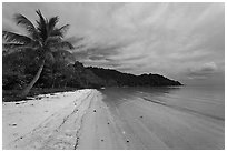 Palm-fringed tropical sandy beach, Bai Sau. Phu Quoc Island, Vietnam ( black and white)