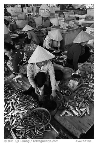 Women selling fish at market, Duong Dong. Phu Quoc Island, Vietnam (black and white)
