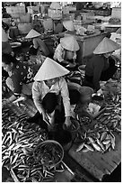 Women selling fish at market, Duong Dong. Phu Quoc Island, Vietnam ( black and white)