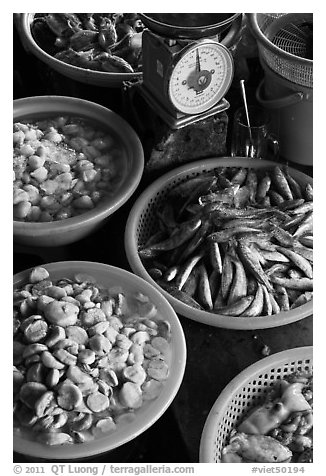 Close up of baskets of seafood and scale, Duong Dong. Phu Quoc Island, Vietnam (black and white)
