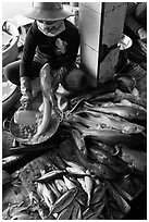 Woman cleans up fish for sale, Duong Dong. Phu Quoc Island, Vietnam ( black and white)