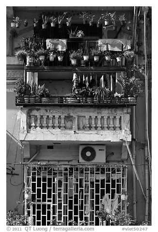 Windows with potted plants and laundry. Ho Chi Minh City, Vietnam (black and white)