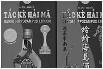 Close-up of Gekko Hippocampus liquor used in traditional medicine. Cholon, Ho Chi Minh City, Vietnam ( black and white)