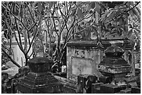 Graveyard, Giac Lam Pagoda. Ho Chi Minh City, Vietnam (black and white)
