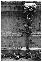 Incense and flowers next to tomb. Ben Tre, Vietnam ( black and white)