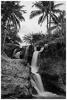 Waterfall flowing under palm trees, Fairy Stream. Mui Ne, Vietnam (black and white)