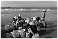 Women on beach sorting fresh catch. Mui Ne, Vietnam ( black and white)