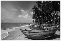 Beach with palm trees and fishing boats. Mui Ne, Vietnam ( black and white)