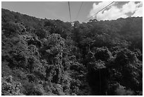 Tropical forest seen from cable car. Ta Cu Mountain, Vietnam (black and white)