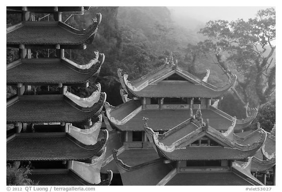 Roofs of temple and pagoda. Ta Cu Mountain, Vietnam (black and white)