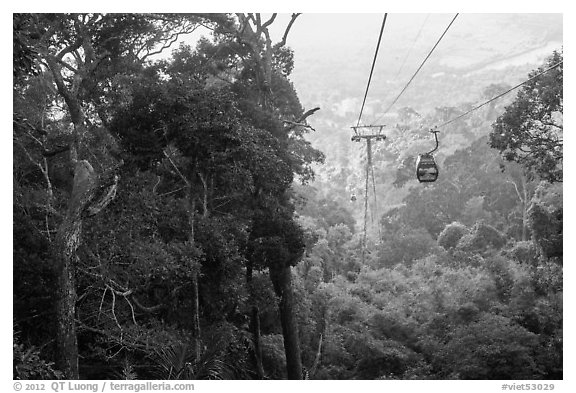 Cable car and tropical forest. Ta Cu Mountain, Vietnam (black and white)