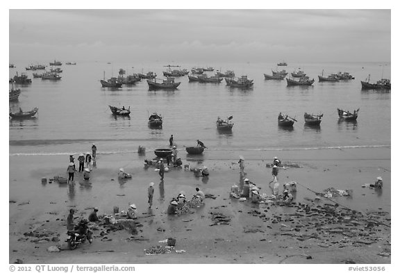 Fishing harbor from above. Mui Ne, Vietnam (black and white)