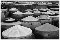 Rows of fish sauce vats. Mui Ne, Vietnam (black and white)