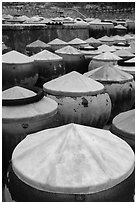 Fish sauch being aged in vats. Mui Ne, Vietnam (black and white)