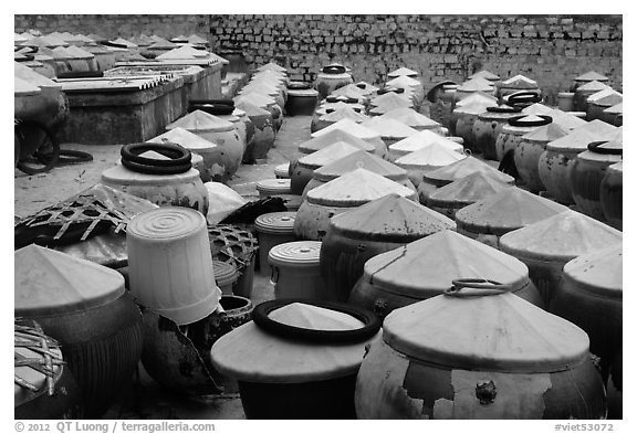 Vats of Nuoc Mam Fish Sauce. Mui Ne, Vietnam (black and white)