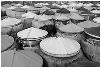 Amphorae of fish sauce. Mui Ne, Vietnam (black and white)