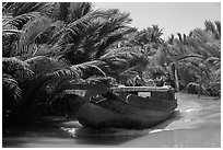 Boat navigating narrow waterway, Phoenix Island. My Tho, Vietnam (black and white)