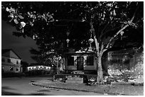 Tree with paper lanterns in Japanese Bridge area at night. Hoi An, Vietnam (black and white)