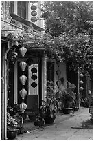 Sidewalk and houses with paper lanterns and lush vegetation. Hoi An, Vietnam ( black and white)