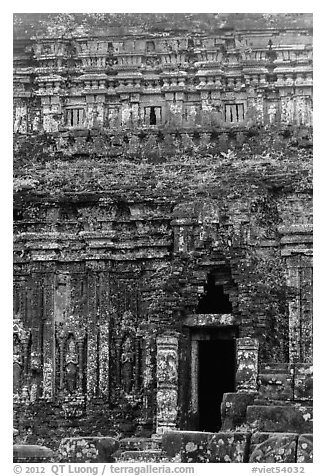 Champa tower taken over by vegetation. My Son, Vietnam (black and white)