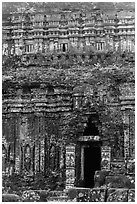 Champa tower taken over by vegetation. My Son, Vietnam ( black and white)