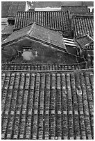Rooftop detail. Hoi An, Vietnam ( black and white)