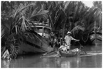 Fishermen row sampan in lush river channel. Hoi An, Vietnam (black and white)
