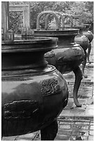 Row of urns, imperial citadel. Hue, Vietnam ( black and white)