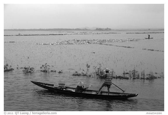 Villagers on flooded fields. Hue, Vietnam (black and white)