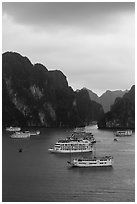 Elevated view of white tour boats and islets. Halong Bay, Vietnam (black and white)