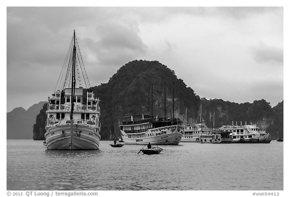 White tour boats. Halong Bay, Vietnam (black and white)