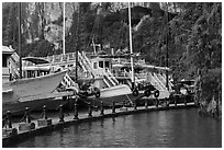 Tour boats at pier. Halong Bay, Vietnam (black and white)
