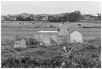 Tombs set amongst field. Vietnam ( black and white)