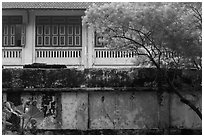 Weathered walls. Hanoi, Vietnam (black and white)