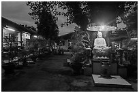 Buddha and banyan tree at dusk, Phung Son Pagoda, district 11. Ho Chi Minh City, Vietnam (black and white)