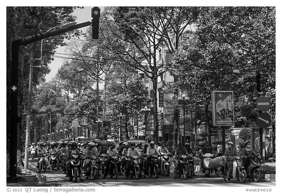 Motorcyclists on tree-lined street, district 5. Ho Chi Minh City, Vietnam (black and white)