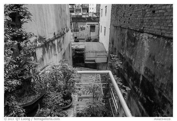 Potted plants on balcony garden. Ho Chi Minh City, Vietnam (black and white)