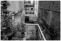 Potted plants on balcony garden. Ho Chi Minh City, Vietnam ( black and white)